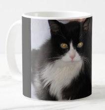 Maui's Mug