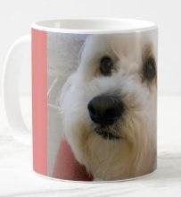 Freddie's Mug on a Mug